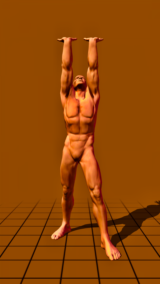 standing - on straight arms
