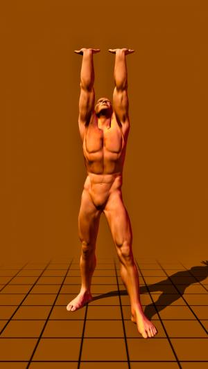 stehend - auf langen Armen